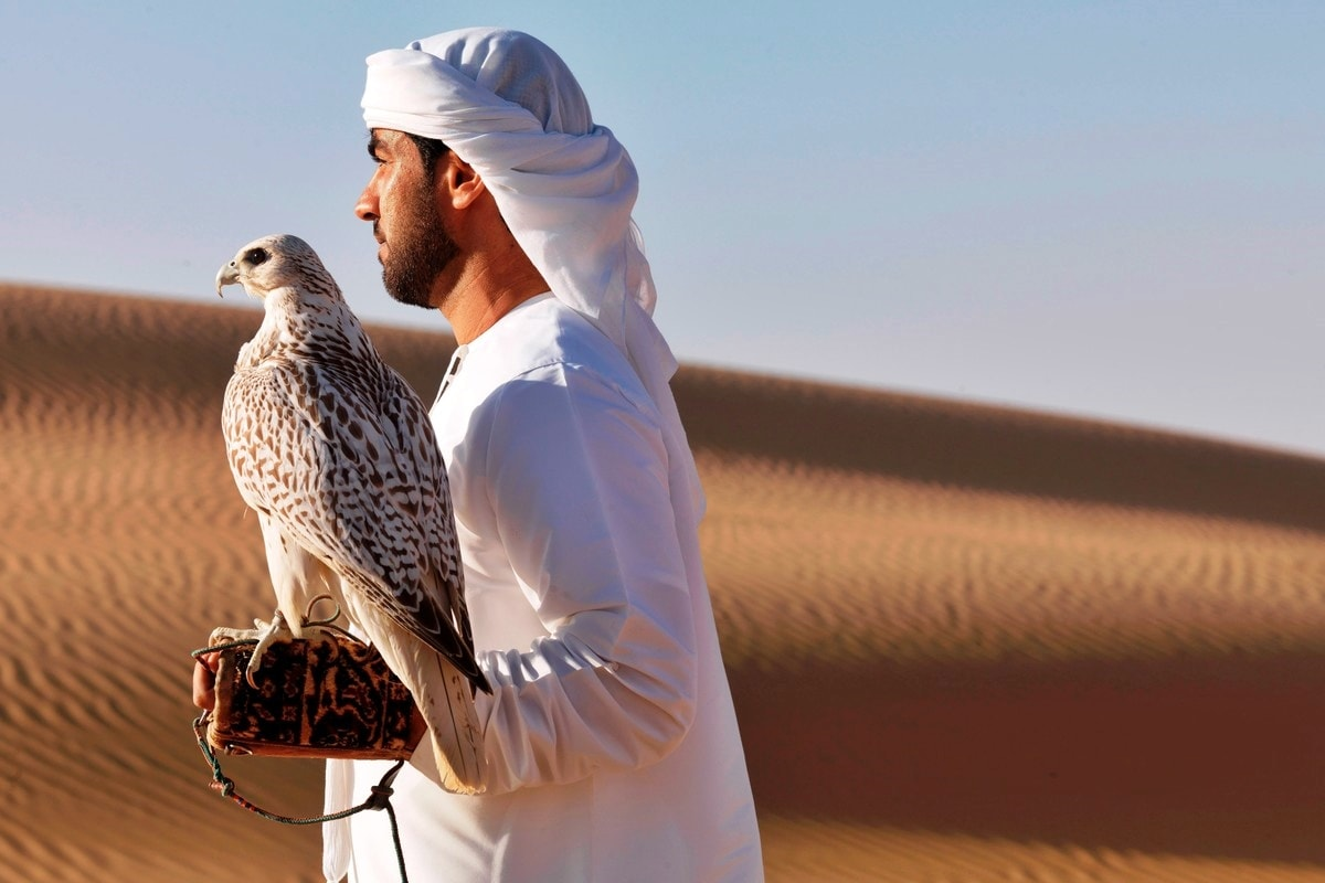 Tours From Abu Dhabi Stopovertrips Com